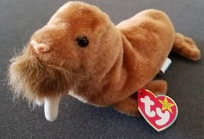 1999 Original TY Beanie Baby - PAUL the Walrus -7 inch- Stuffed Animal Toy c7fb8fb2e2b1