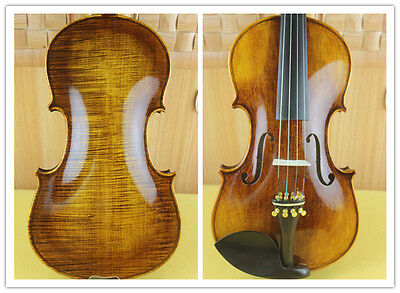 New PRO handmade 4/4 full size Violin powerful sound high quality