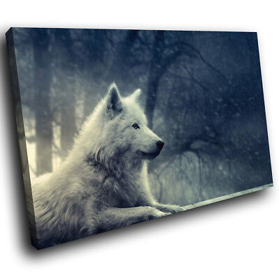 White Wolf Forest Black Funky Animal Canvas Wall Art Large Picture Prints