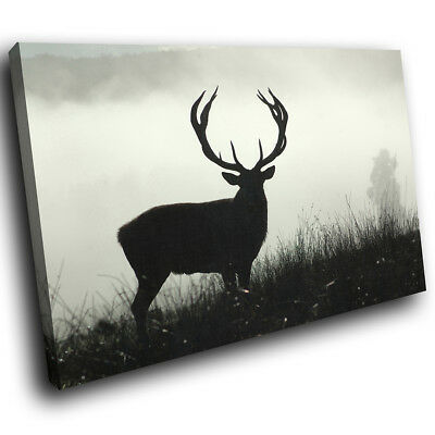 Black Stag  Shadow Forest Funky Animal Canvas Wall Art Large Picture Prints