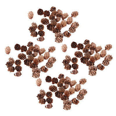 120pcs Natural Decorative Pine Cones Pinecone for Florists Crafts Decoration