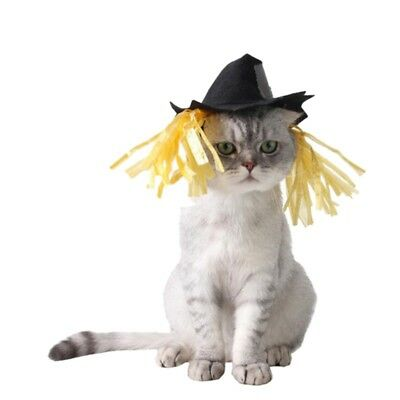 Pet Halloween Cosplay Costume Caps Dogs Cats Funny Patch Festival Cute Hats NEW