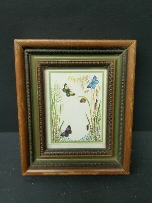 Antique Vintage Wooden Framed Butterfly Photo