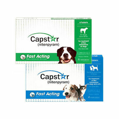 Capstar Flea Tablets for Dogs & Cats 1 TABLET & Gloves