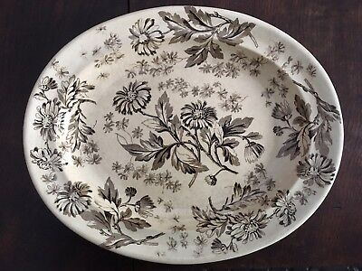 "Antique 1800's Wedgwood Brown Transferware ""Aster"" 12"" x 14 3/4"" Platter"
