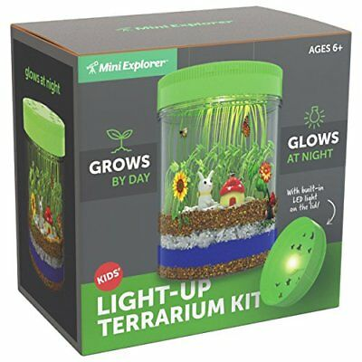 ❤ Kids Mini Explorer Light-Up Terrarium Kit Led On Lid Create Your Own Cust ❤