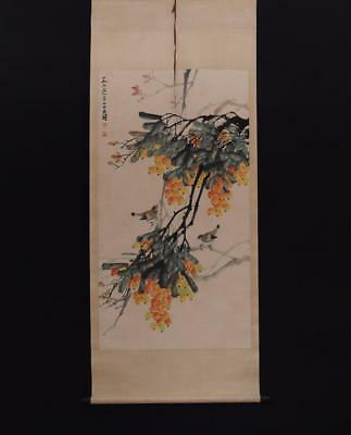 Fine Chinese Hand-painting Painting Scroll Chen Dayu Marked-loquat