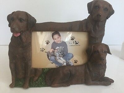 Chocolate Labrador 4x6 Dog Picture Frame By E&S Imports ~NEW~