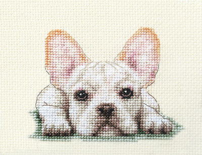 WHITE FRENCH BULLDOG dog, puppy ~Full counted cross stitch kit + all materials