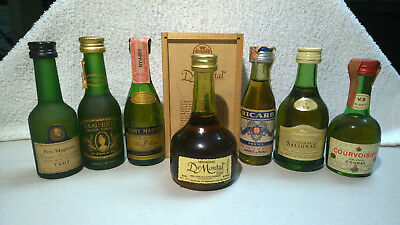 Miniature Bottles - 12 Bottles - French Cognacs and Armagnacs, Remy, Otard