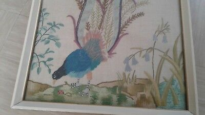 vintage embroidery picture peacock