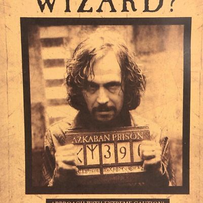 Harry Potter Poster Have You Seen This Wizard Wall Sticker Home Decor Placard