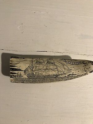 The Catalpa Faux Scrimshaw Resin Whale Tooth