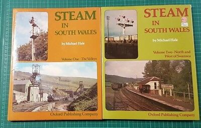 Steam In South Wales Volume 1 and Volume 2 - The Valleys - Swansea Michael Hale