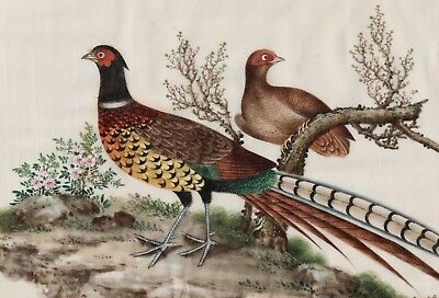 Antique c.1850 Chinese Painting on Pith Paper of Two Birds