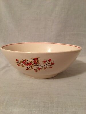 Vtg Universal Cambridge Pottery Camwood Ivory Bittersweet Mixing Serving Bowl