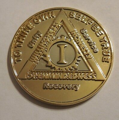 Aa 1 Year Bi Plate Alcoholics Anonymous Coin Chip Medallion Token New