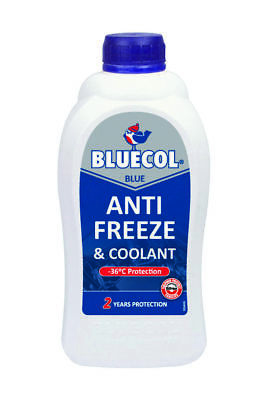 Bluecol 2 Year Protection Blue Antifreeze Concentrate 1L -36 Protection