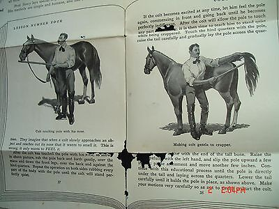 Prof Beery Horse Colt training course system advrt POSTER FLYER Pleasant Hill OH