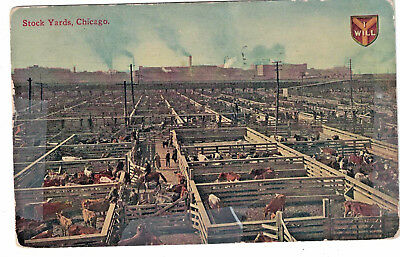 July 1912 Postcard Chicago Stock Yards Color