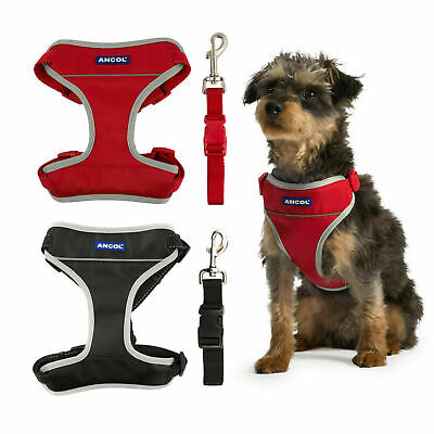 Ancol Dog Car Safety Travel Harness with Reflective Edges & Seatbelt Attachment