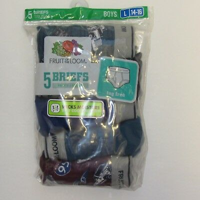 Boys Fruit of the Loom Briefs ~ Size Large 14-16 ~ 5 Pack~