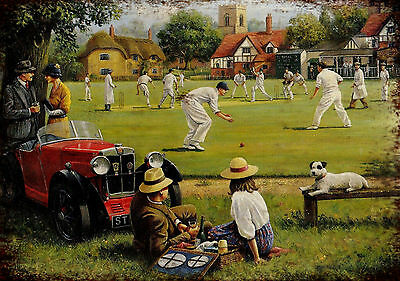 Image result for village cricket match