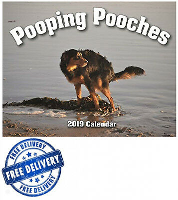 2019 Gag Gift Calendar Pooping Pooches White Elephant Yankee Swap Secret Santa