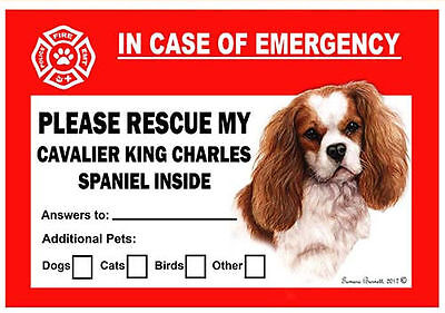 Cavalier King Charles Spaniel Pet Savers Emergency Rescue Window Cling Sticker