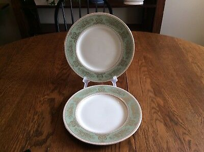 Two (2) Wedgwood Sage Green Columbia Dinner Plates