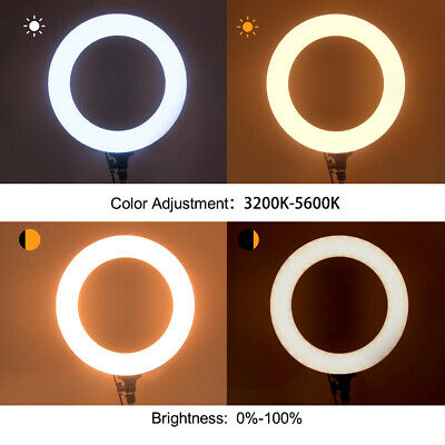 CRAPHY 5600k SMD LED Ring Light dimmbare Fotolicht Studiolicht Lampe mit Stand