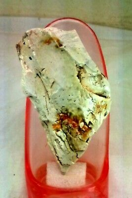 Stone-age Axe-Head Axe. Paleolithic period. Museum Level. Jordan Rift Valley.
