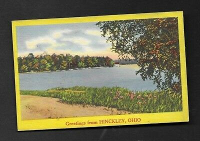Postcard Greetings from Hinckley OH *8069