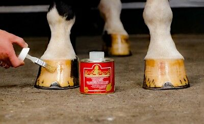 Als Set, Kevin Bacon's Hoof Solution und KEVIN BACON'S Liquid Hoof Dressing