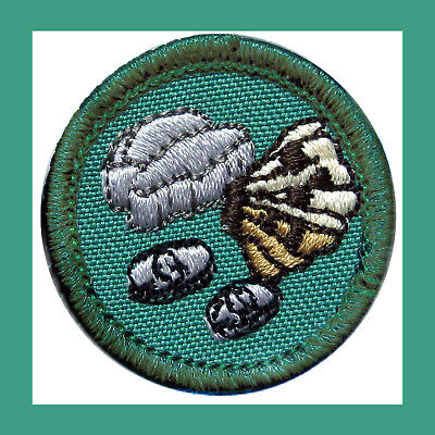 MY HERITAGE Girl Scout 2001 Jr Jade New BADGE Family Tree Patch Combine Ship