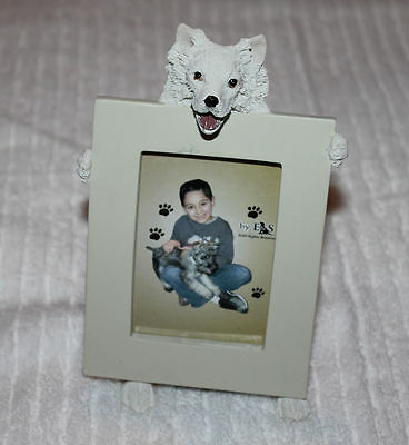 American Eskimo Dog Picture Photo Frame