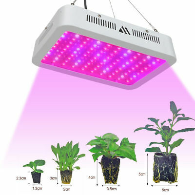 VANDER 2000W LED Grow Light Full Spectrum Hydroponic Flower Medical Plant Lamp