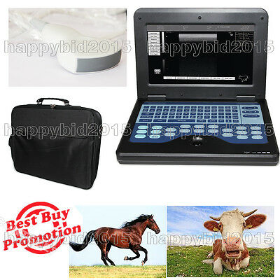 CE Approved,VET Veterinary LAPTOP Ultrasound scanner machine+3.5Mhz Convex Probe