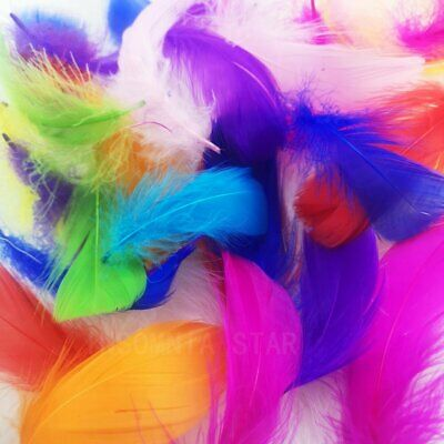 100pcs Natural Goose Feathers 8-12 Cm Swan Plume DIY Carnival Decoration Craft