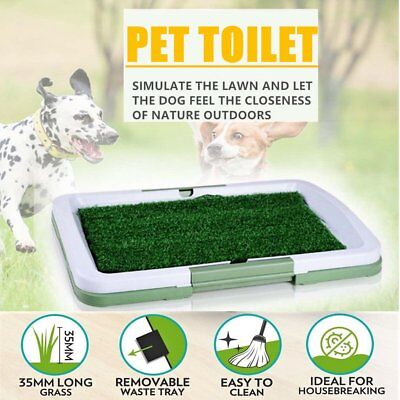 Large Indoor Pet Dog Grass Mat Potty Pee Training Pad Toilet Loo Clean Pad Tray
