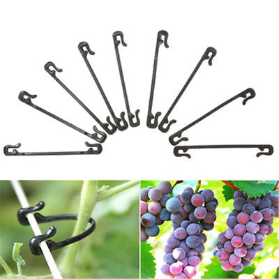 100pcs Greenhouse Garden Vegetable Plant Fixed Lashing Hook Clips Tied Buckle SR