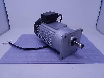 Luyang Gear Motor 1/3 HP 110 V 1 PH 3 A T110896