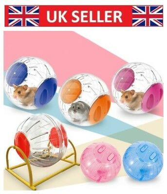 Clear Exercise Large Hamster Ball Gerbil Rat Small Pet Activity Play Toy - 12cm