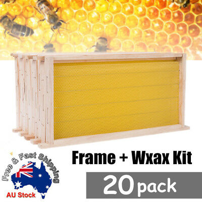 BEEKEEPING COMBO 20 Pack Bees Wax Foundation & 20 Alliance