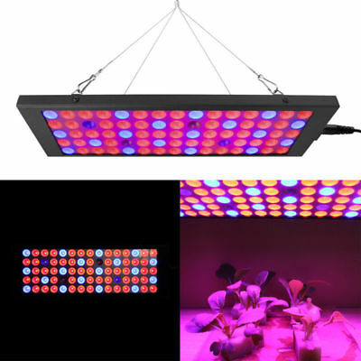 100W Led Grow Light Hydroponics Full Spectrum IR UV Veg Flower Indoor Plant