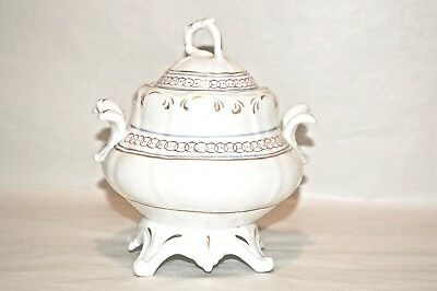 Antique mid-19th Century lidded Sugar pot gold gilt pattern and blue banding