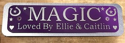 Personalised Stable Door Sign, Horse/Pony Name, Horse Name Plate Plaques1