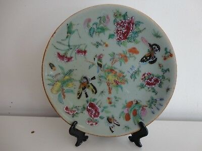 Antique Chinese Famile Rose Celadon Ground Plate, 19Thc