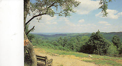 Postcard  Surrey Hindhead , the devil's Punch Bowl posted   colourmaster