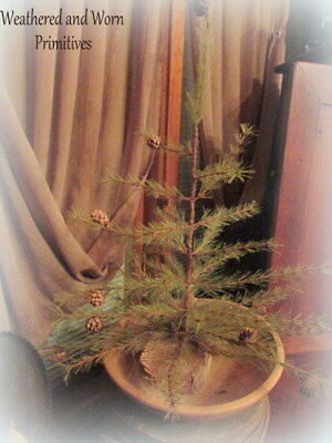 "Primitive Country 24"" Cypress Pine Christmas Tree with Textured Trunk"